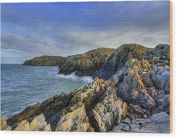 Rocky Ocean Wood Print by Ian Mitchell