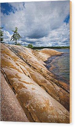 Rocky Shore Of Georgian Bay Wood Print by Elena Elisseeva