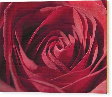 Rose Red Wood Print by Tara Lynn