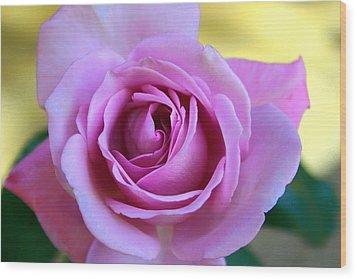 Roses Wood Print by Denise Moore
