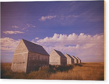 Row Of Old Farm Houses Wood Print by Kelly Redinger
