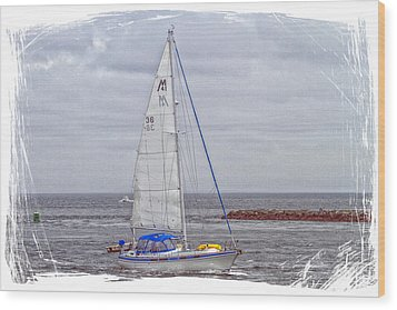 Sailing Wood Print by Constantine Gregory
