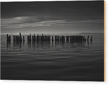 Salton Sea Piles Wood Print
