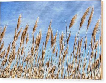 Sea Breeze Wood Print by Kelvin Booker
