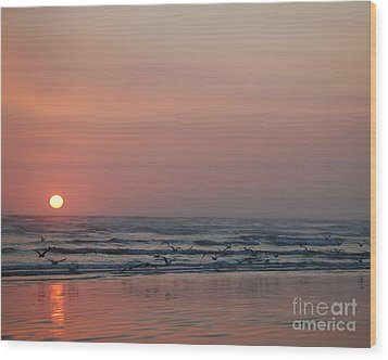 Seagulls At Sunset Wood Print by Chuck Flewelling