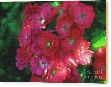 Wood Print featuring the photograph Shades Of Red by Mary Lou Chmura