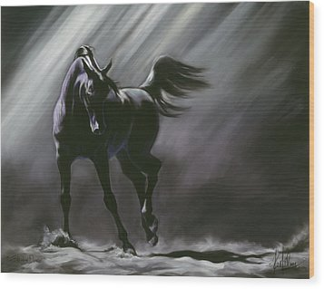 Shadow Dancer Wood Print by Kim McElroy