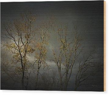 Shine 2 Wood Print