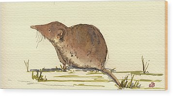 Shrew Wood Print by Juan  Bosco