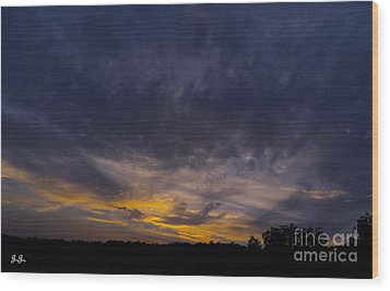 Wood Print featuring the photograph Silence Is Golden by Geri Glavis
