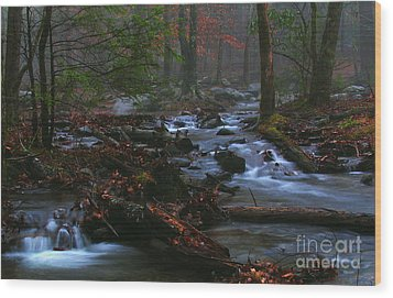 Smoky Mountain Color Wood Print by Douglas Stucky