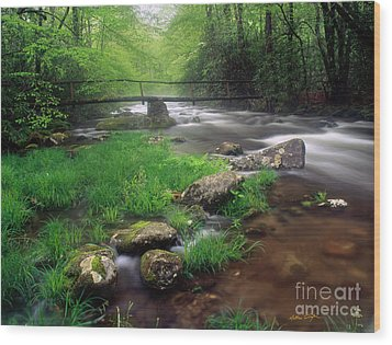 Smoky Mountain Stream 2009 Wood Print