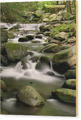 Smoky Mountain Stream Wood Print by Cindy Haggerty