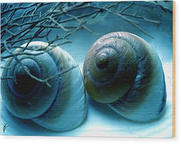 Snail Joy  Wood Print
