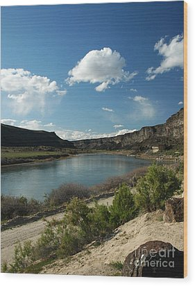 711p Snake River Birds Of Prey Area Wood Print by NightVisions