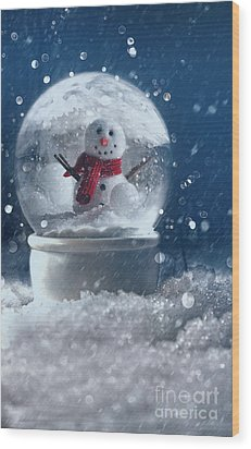 Wood Print featuring the photograph Snow Globe In A Snowy Winter Scene by Sandra Cunningham