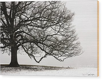 Snow Tree 2010 Wood Print