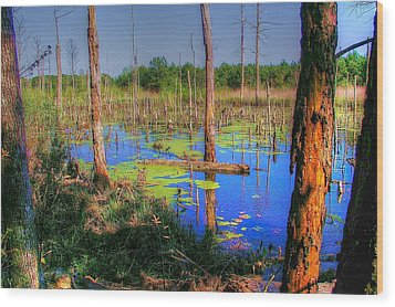 Southern Swamp Wood Print by Ed Roberts