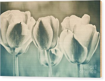 Spring Inspiration Wood Print by Angela Doelling AD DESIGN Photo and PhotoArt