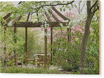 Spring Seating Wood Print by Living Color Photography Lorraine Lynch
