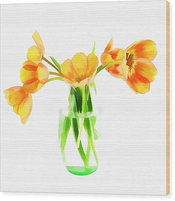 Spring Tulips Wood Print by Darren Fisher