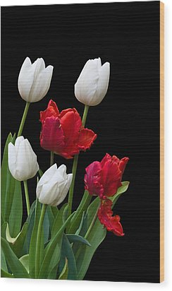 Spring Tulips Wood Print by Jane McIlroy