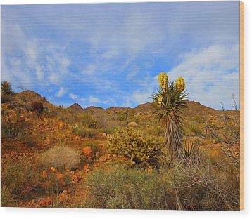 Springtime In Arizona Wood Print