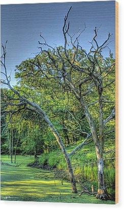 Stagnation Wood Print