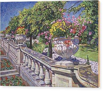 Stairway Of Urns Wood Print by David Lloyd Glover