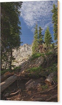 Steep Mountain Hike Wood Print by Michael J Bauer