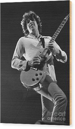 Stone Temple Pilots - Dean Deleo Wood Print by Concert Photos