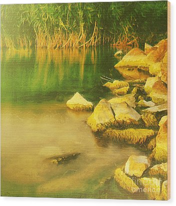 Stones In Front Of The Reed Wood Print by Odon Czintos