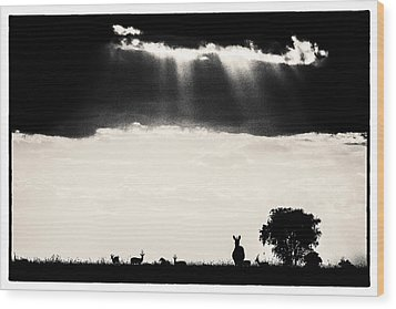 Wood Print featuring the photograph Stormy Silhoettes by Mike Gaudaur