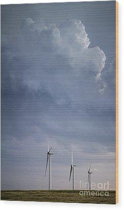 Stormy Skies Wood Print by Jim McCain