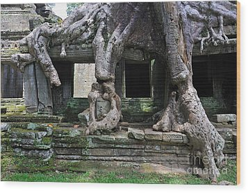 Strangler Fig Tree Roots On Preah Khan Temple Wood Print by Sami Sarkis