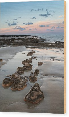 Summer Landscape With Rocks On Beach During Late Evening And Low Wood Print by Matthew Gibson