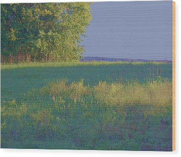Wood Print featuring the photograph Summer Light by Shirley Moravec