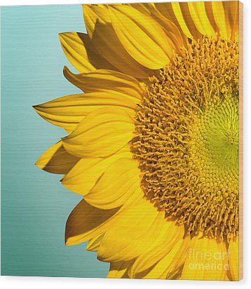 Sunflower Wood Print by Mark Ashkenazi