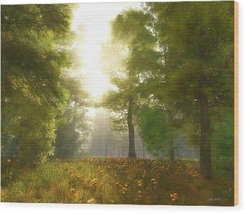 Sunlit Meadow Wood Print by Cynthia Decker