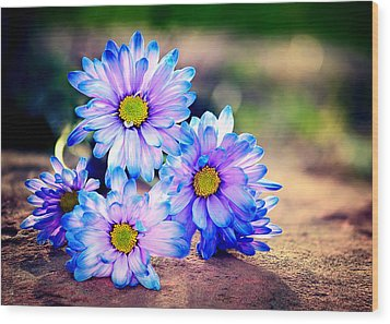 Sunset Flowers Wood Print by Tammy Smith