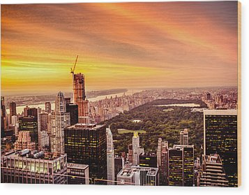 Sunset Over Central Park And The New York City Skyline Wood Print by Vivienne Gucwa