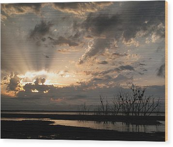 Sunset  Wood Print by Sandy Ramsey