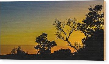Sunset Silhouette Wood Print by Debra and Dave Vanderlaan