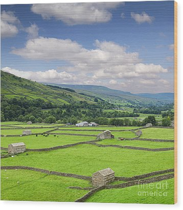 Swaledale Yorkshire Dales England Wood Print by Colin and Linda McKie