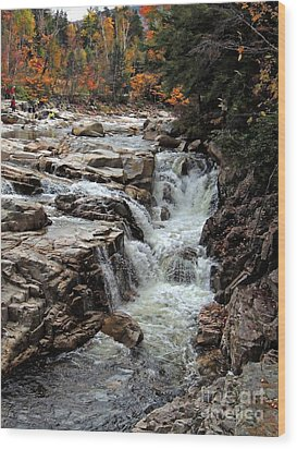 Swift River Wood Print by Marcia Lee Jones