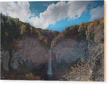 Wood Print featuring the photograph Taughannock Falls Ithaca New York by Paul Ge