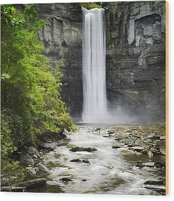 Taughannock Falls State Park Wood Print by Christina Rollo