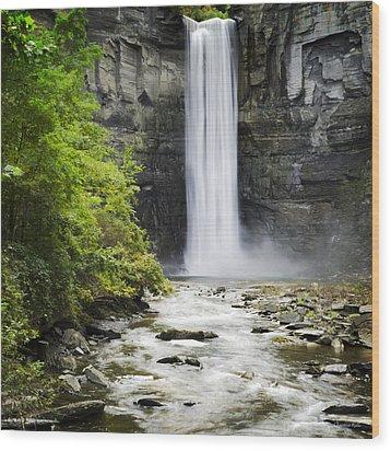 Taughannock Falls State Park Wood Print