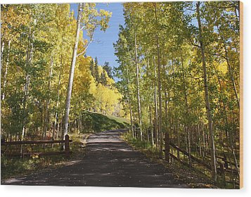 Telluride Colorado Fall Wood Print by Michael J Bauer