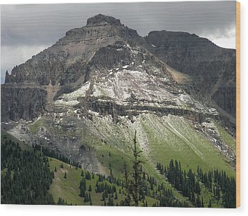 Wood Print featuring the photograph Telluride Summer Hail Storm by Robert Lozen